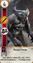 W3 SS Gwint Wampir Fleder