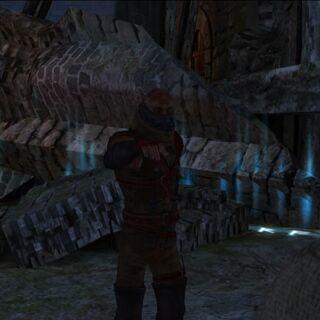 Savolla przed walką z Geraltem  – kadr z gry.