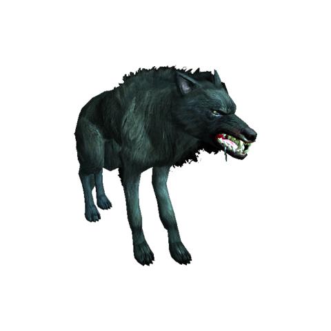 Wilk w grze Wiedźmin