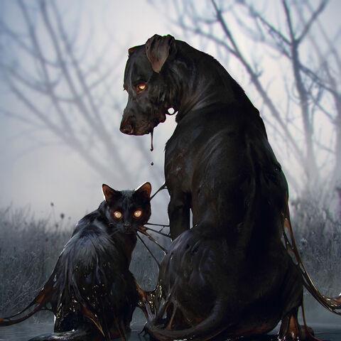 Kot i Pies w <a href=