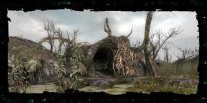 W1 SS Jaskinia druidów