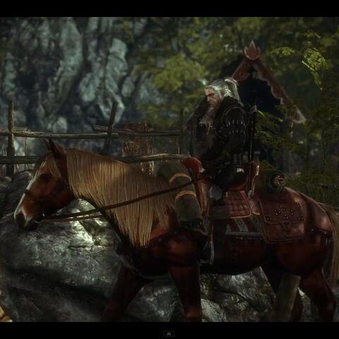 Geralt na Płotce w grze komputerowej <a href=