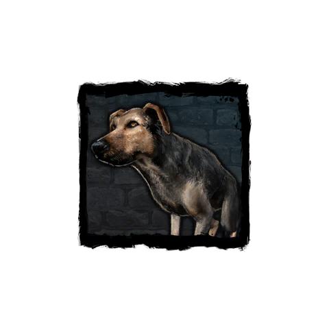 Pies w grze Wiedźmin