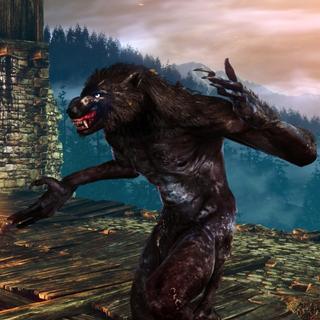 Wilkołak na Arenie w grze Wiedźmin 2