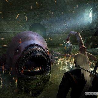 Finalna wersja z gry