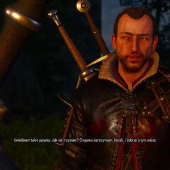 Witcher 3 Gwint Lambert