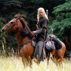 Geralt na Płotce