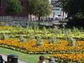 Queens gardens newcastle under lyme.jpg