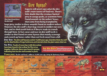 Dire Wolf back