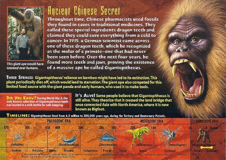 Gigantopithecus back