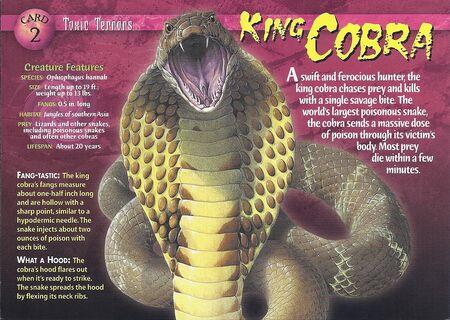King Cobra front