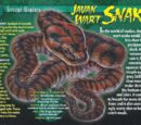Javan Wart Snake