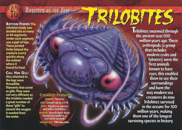 File:Trilobites front.jpg