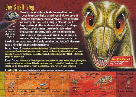Mussaurus back