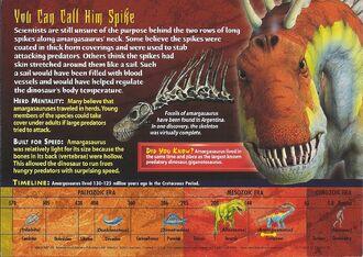 Amargasaurus back