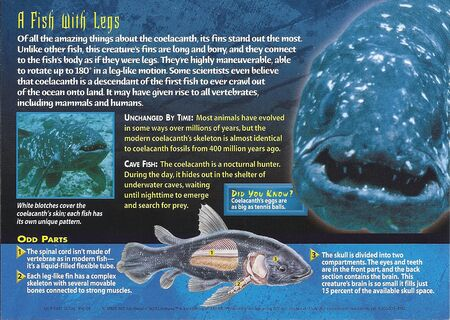 Coelacanth back