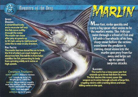 Marlin front