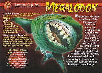 Megaladon front