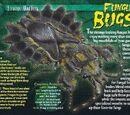 Fungus Bugs