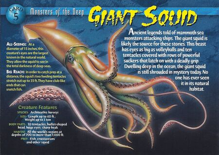 Giant Squid front