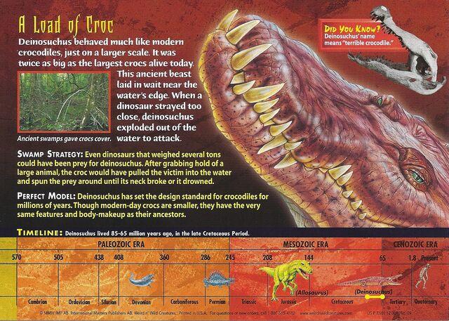 File:Deinosuchus back.jpg