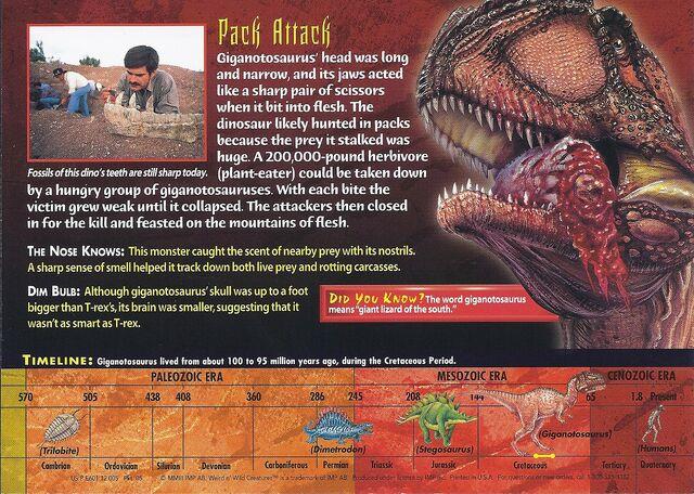 File:Giganotosaurus back.jpg