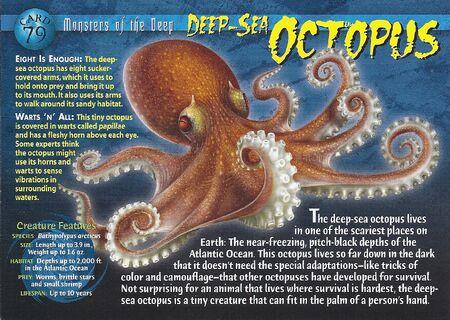 Deep-Sea Octopus front