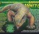 Savannah Monitor