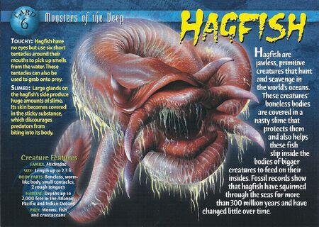 Hagfish front