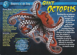 Giant Octopus front