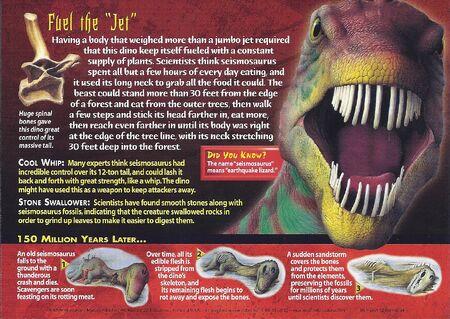 Seismosaurus back
