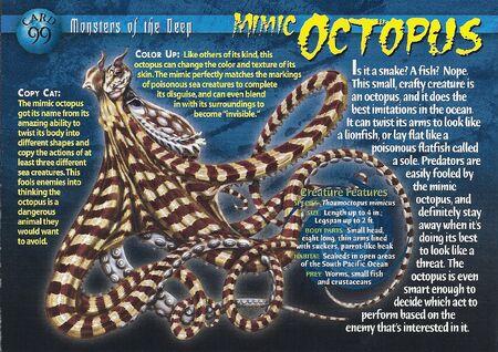 Mimic Octopus front