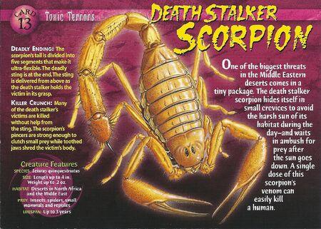 Death Stalker Scorpion front