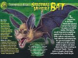 Spectral Vampire Bat