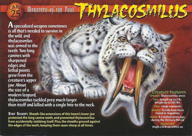 File:Thylacosmilus front.jpg