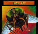 Horse Fly TCG