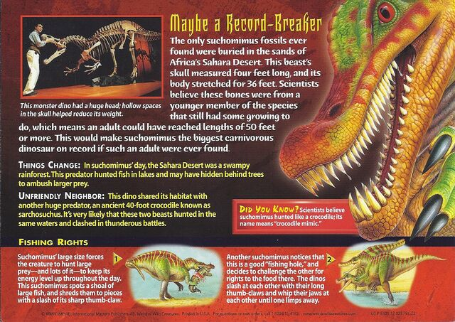 File:Suchomimus back.jpg