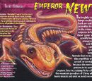 Emperor Newt