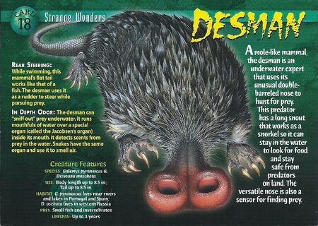 Desman front
