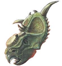 Triceratops Back Image 3