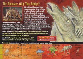 Stegosaurus back