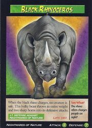 Black rhinoceros 2