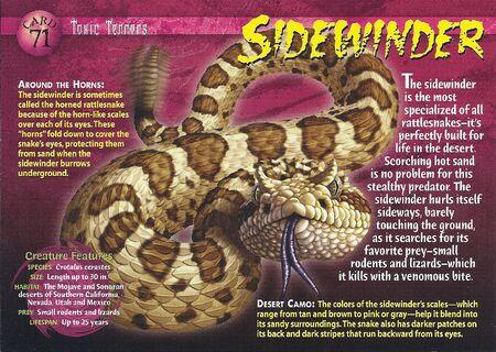 Sidewinder front