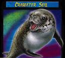 Crabeater Seal TCG