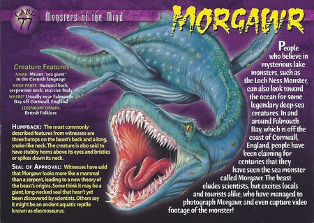 Morgawr front