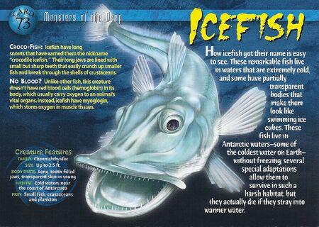 Icefish front