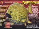 Dapedium