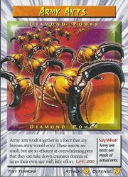Army Ants Diamond