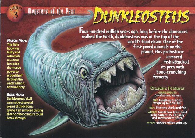 File:Dunkleosteus front.jpg