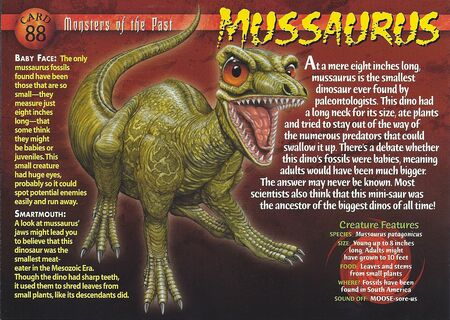 Mussaurus front